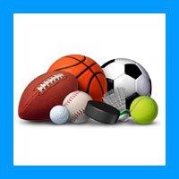 Какой вид спорта выбрать для ставок?